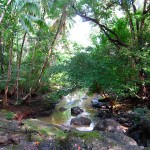 stream-to-cabuya-IMG_3367.JPG